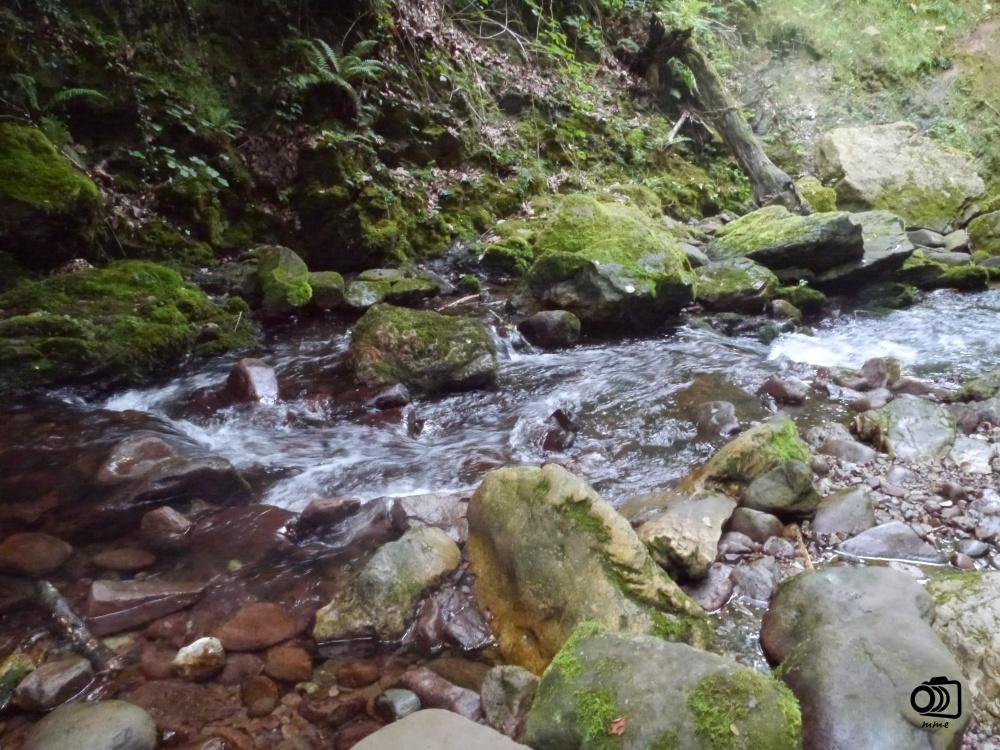 Río del xorroxín