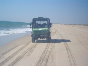 Vehículo para recorrer Doñana.