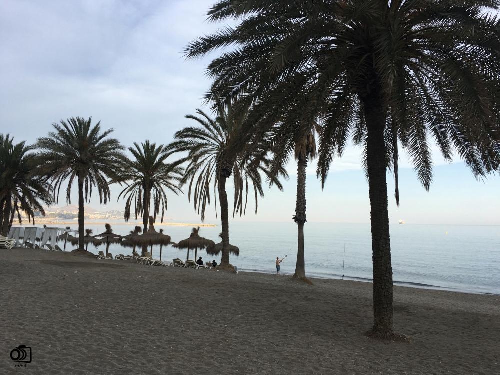 Playa de La Malagueta.